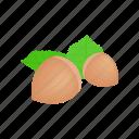 filbert, food, green, hazel, hazelnut, isometric, nut icon