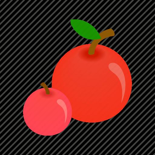 apple, fresh, fruit, green, isometric, vegetarian, vitamin icon