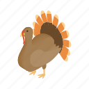 animal, bird, cute, holiday, isometric, thanksgiving, turkey icon