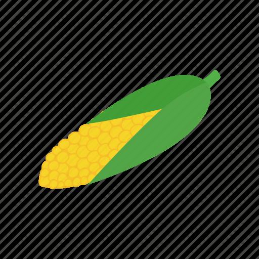 corn, food, grain, healthy, isometric, maize, vegetable icon