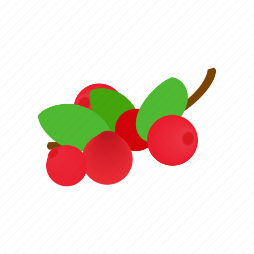 berry, cranberry, food, freshness, isometric, red, ripe icon