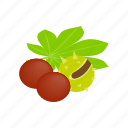 food, fresh, fruit, green, isometric, nature, tropical icon