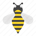 sting, thanksgiving, bee, insects, proboscis