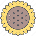 agriculture, grain, harvest, rural, seeeds, sunflower, village icon