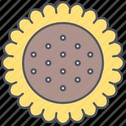 agriculture, grain, harvest, rural, seeeds, sunflower, village icon