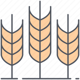 agriculture, bakery, bread, harvest, rural, village, wheat icon