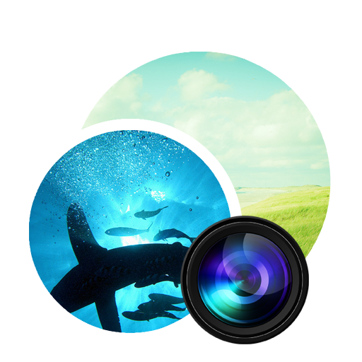 Photodupicator icon