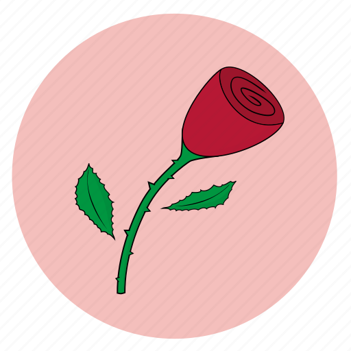 fleur, flower, girly, pink, rose icon