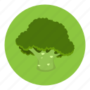 brocoli, food, fruit, vegetable icon