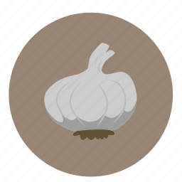 food, fruit, garlic, vegetables icon