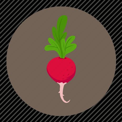 food, fruit, tulpis, vegetable icon
