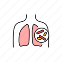 tuberculosis, lungs, organ