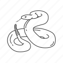 carnivorous reptiles, rattle snake, reptile, serpentes, small small reptile, snake, squamata icon