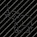 african elephant, asian elephant, baby elephant, circus, elephant, elephantidae, large land mammal icon