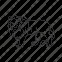 african lion, big cat, large land mammal, lion, panthera leo, circus, zoo icon