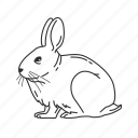 bunny, easter, hare, lagomorpha, leporidae, rabbit, small land mammal icon