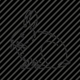 bunny, easter, hare, lagomorpha, leporidae, rabbit, small land mammal icon