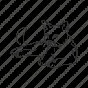 cat, domestic cat, feline, house cat, small land mammal, kitten, kitty icon