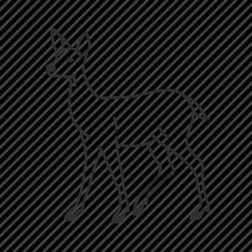 baby deer, bambi, cervidae, common deer, deer, medium land mammal icon