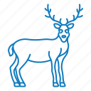 animal, deer, male, wood icon