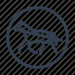 dobbin, hack, hackney, horse, nag, transport, wagon icon