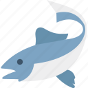 animal, dolphin jumping, nature, ocean, whale, wildlife icon