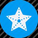and, starfish, tourism, travel icon