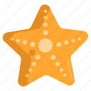 animal, ocean, sea, starfish icon