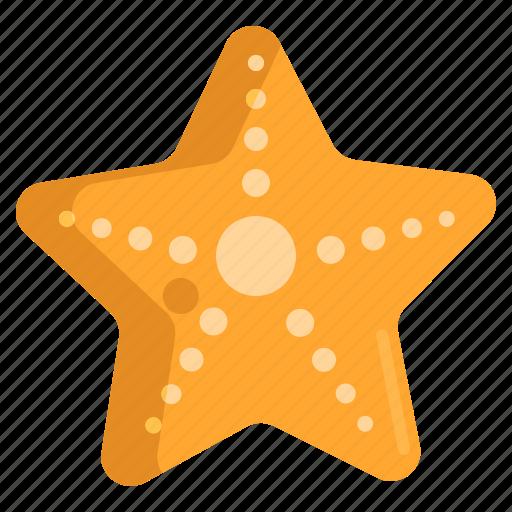 animal, ocean, sea, starfish icon