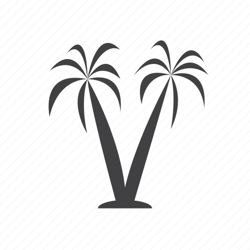 palm, tree, vacation icon