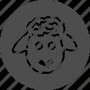 agritourism, sheep, animal, pet, animals