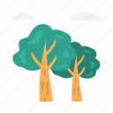 clouds, green, nature, summer, tree