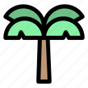 ecology, plant, forest, tree, garden, nature