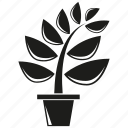 foliage, forset, leaf, nature, plant, pot, tree icon