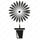 flower, garden, plant, pot, sunflower icon