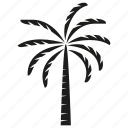 coconut, forset, growth, nature, palm, plant, tree icon