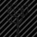 arid, botany, forset, growth, nature, plant, tree icon