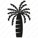 coconut tree, forset, growth, nature, palm, plant, tree icon