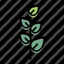 leaf, leaves, nature, tree icon