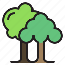 forest, garden, nature, tree