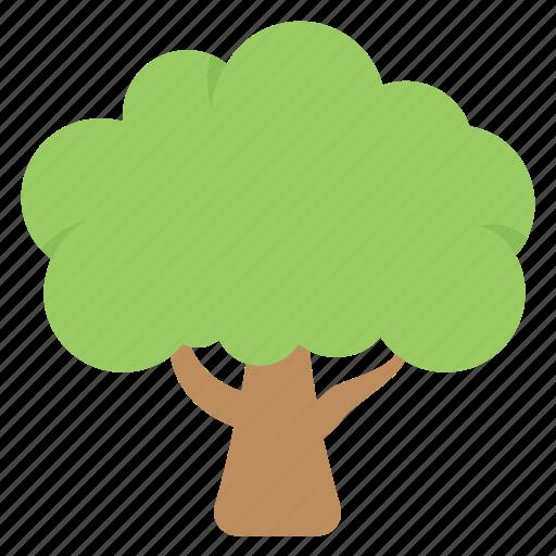 ecology, greenery, nature, plant, tree icon