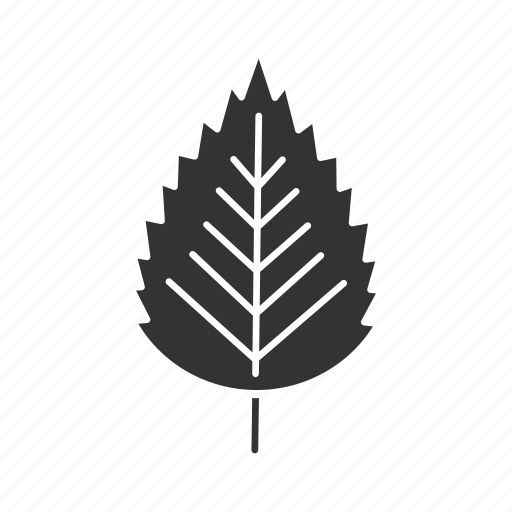 birch, forest, leaf, nature, park, plant, tree icon