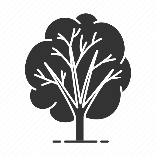 branch, forest, leaf, nature, park, plant, tree icon