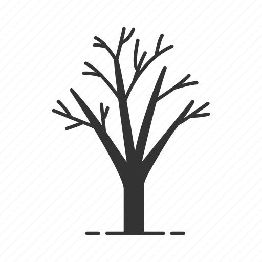 autumn, branch, forest, leafless, park, tree, winter icon