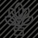 growing, home, houseplant, patio, plant, pot icon