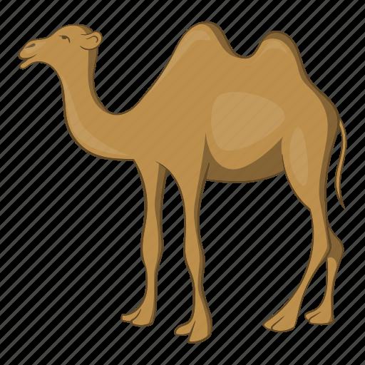 Camel, cartoon, desert, egypt, hump, sand, turkish icon - Download on Iconfinder