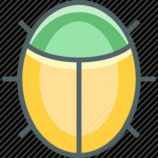 animal, antivirus, bug, insect, virus icon