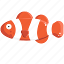 clown, clownfish, sea, fish