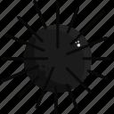 food, sea, urchin icon