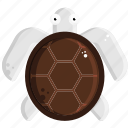 beach, sea, tortoise, turtle icon